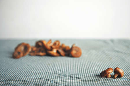 Two little mushrooms with more mushrooms out of focus on a table with navy and blue checkered tablecloth against white wall background