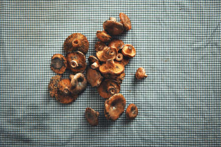 A bunch of small button mushrooms ready to be prepared lying on a navy and blue tablecloth