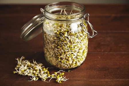 Beaucoup de petits germes de soja à l'intérieur de grand pot de verre transparent ouvert isolé sur une table en bois, quelques germes sont à proximité