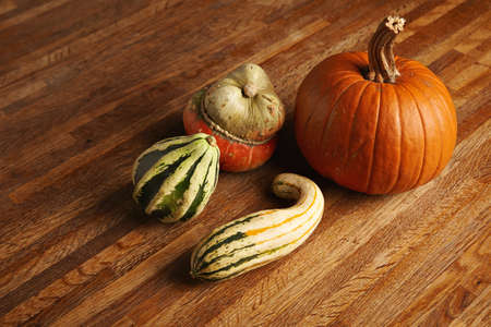 Mixed different pumpkins isolated on wooden table in center LANG_EVOIMAGES