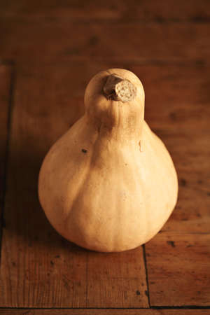 Close focus on bottle squash pumpkin, isolated on blurred wooden table