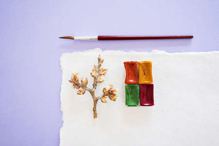 Handcrafted paper with torn edges with watercolor palette, red brush for drawing and spring twig on lilac background, top close up view.