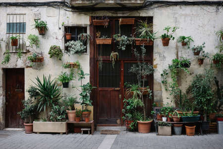 Front overall view of old house with a lot of plants in pots on facade and rustic brown wooden door.