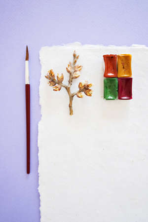 Handcrafted paper with torn edges with watercolor palette, red brush for drawing and spring twig on lilac background, top vertical close up view.