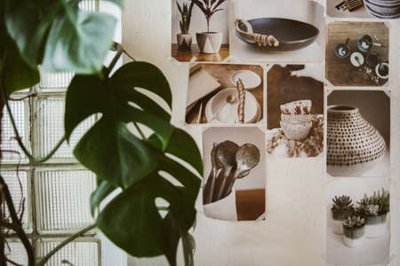 Beautiful decorated wall with photos of ceramic ware and big green plant, focus on pictures