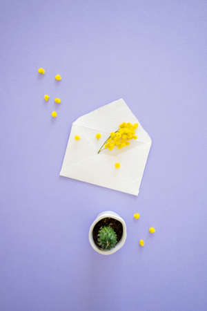 Yellow mimosa flower sticks out of handcrafted little white envelope with mini cactus isolated on lilac background, top vertical view. Standard-Bild