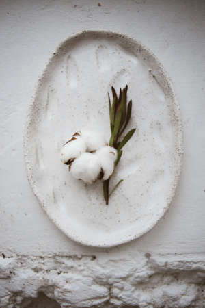 Top view on chamotte clay oval plate with cotton flower and leucadendron twig on white windowsill in workshop