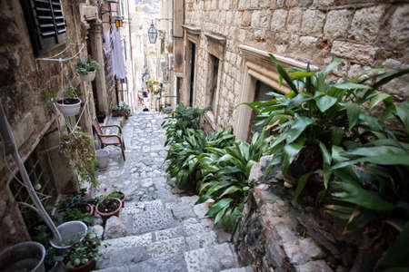 Beautiful narrow street going down, paved with cobbles and decorated with green plants benches and chairs, Dubrovnik Croatia Standard-Bild