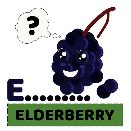vector illustration of elderberry fruit with emoji characters. alphabet E for Elderberry. the concept of educating children to recognize the names  of fruit Illustration