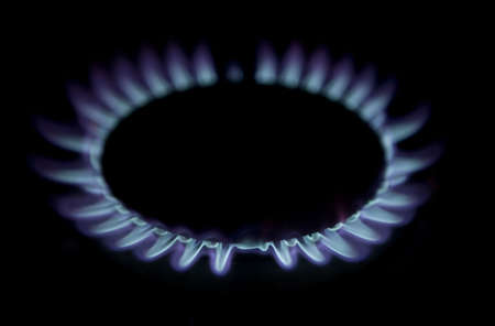 combust:  Blue flames of a gas stove in the dark