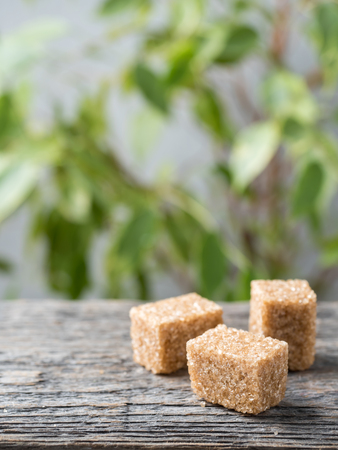 Brown cane sugar on wooden background. Green tree with leaves. Stock Photo