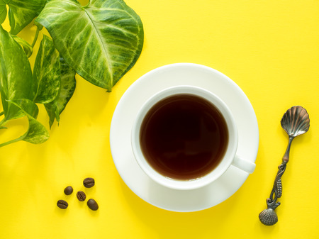 Green leaves plant coffee Cup on yellow desktop, flat lay, copy space