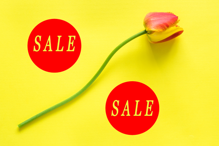 The designation of seasonal discounts. Flower in the form of a percentage on a bright yellow background. Words SALE.