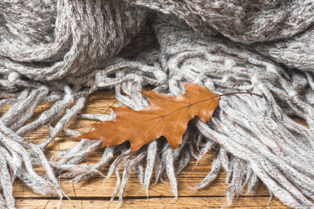 Crumpled grey knitted blanket with autumn oak leaf. Soft and warm fabric is crumpled into folds. Imagens