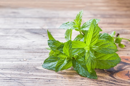 Green fresh mint on wooden table, selective focus. Imagens