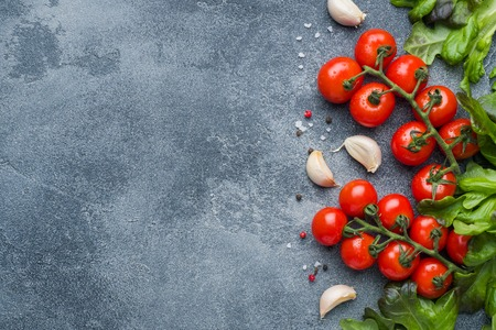 Cherry tomatoes on a branch Fresh herbs and garlic clove with spices on a dark stone table Top view with copy space 写真素材