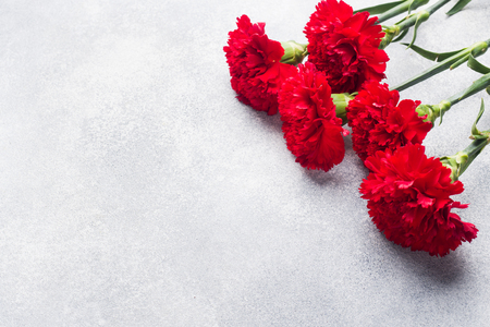 Red carnations on concrete background with copy space. Mother's Day card, Valentine's day
