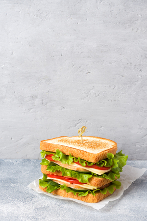 Tasty and fresh sandwiches on a light grey table. Copy space