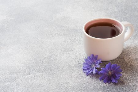 Cup with chicory drink and blue chicory flowers on grey table Copy space.