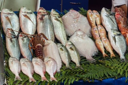 Fresh raw fish on the counter of the street market 写真素材