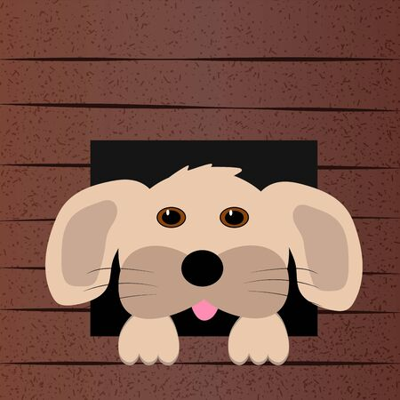 Cute dog face looks out of the booth. Vector illustration. The dog's house Stock Illustratie