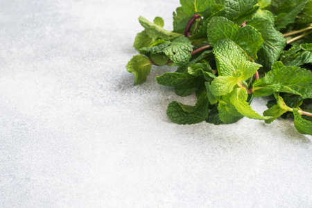 Fresh sprigs of fragrant mint on a gray background with copy space 免版税图像
