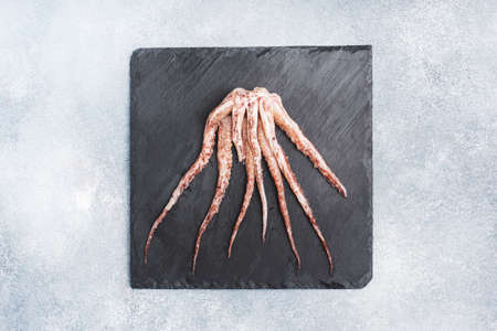 Raw squid tentacles on a black slate board. copy space Top view. Gray background