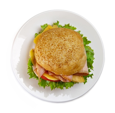 Sandwich on the plate, white background