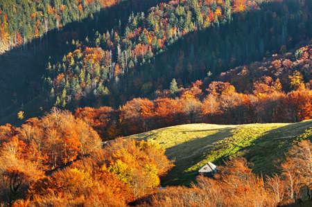 grassy plot: Autumn landscape in mountains Stock Photo