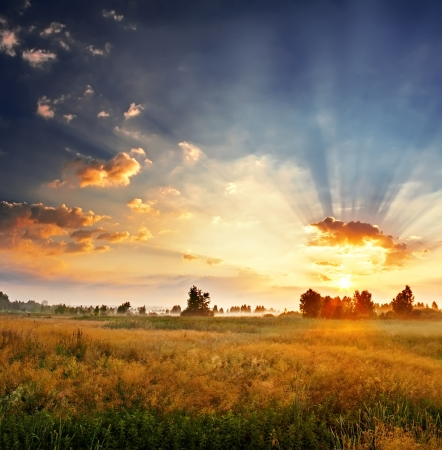 sunset sky: Landscape, sunny dawn in a field