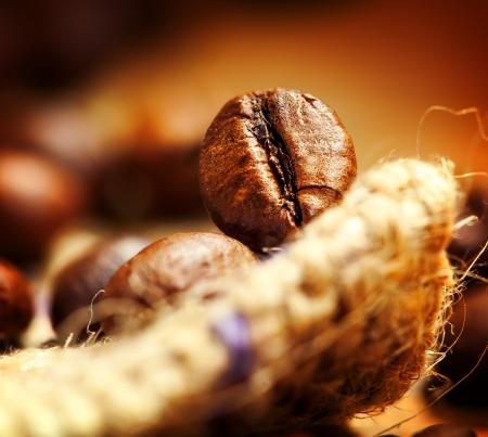 Coffee bean, macro photo