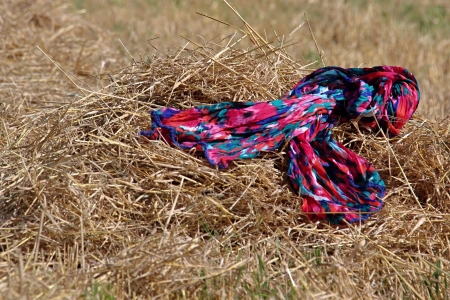Scarf in the Summer Grain Field photo
