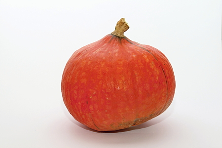 cucurbit: Photo of Pumpkin  perfectly fit to company presentations as well as private purposes for Halloween time. Stock Photo