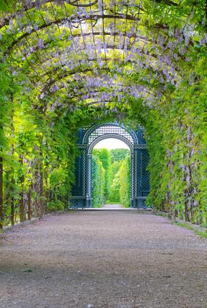 schloss schonbrunn: Photo shows general view of garden of Schonbrunn Palace  Stock Photo