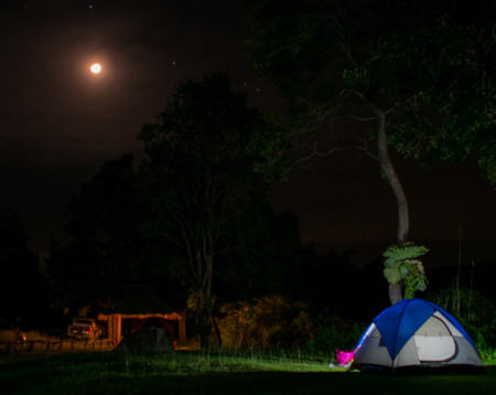 picknick: Camping under the moon at the forest. Stock Photo