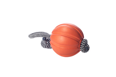 Liker: ball on the cord - toy for dog training and fun, isolated on a white background, pet accessory, pets shop assortment, products Stock Photo