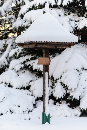 Wooden sign in fungus form, covered with snow, winter season