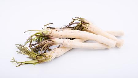 Roots of fresh peeled horseradish on white background, healthy foods