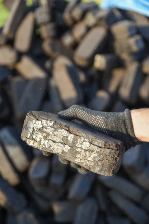 Sample of peat briquette in hand, production of alternative fuels, raw material Stock fotó