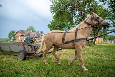 Litynia village, Ukraine - June 02, 2018: Two young boys riding on an old wooden cart. Life in a village Editorial