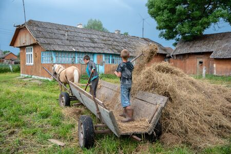 Litynia village, Ukraine - June 02, 2018: Two 10 years old boys working near hay. Making stock hay for livestock. Life in a village, lifestyle