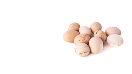 Group of dirty chicken eggs on white background, with shadows, domestic healthy food. Vertical banner with copy space for text