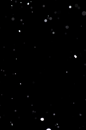 Real snowfall. Design pattern to overlay the image and create a snowfall effect. Deep black color.