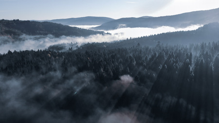 Foggy Autumn Morning in the Carpathian Mountains. Sunrise, rays break through the fog. Amazing Landscape over the Woods, aerial view. Toning effect