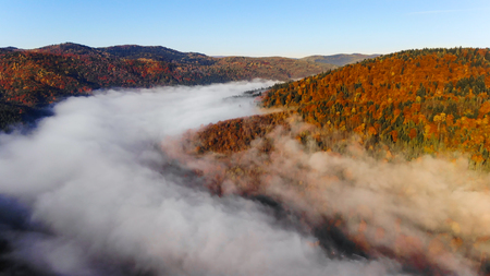 Foggy morning, mountains and forest. Magical and colorful autumn in Carpathian Mountains, Ukraine. Stock Photo