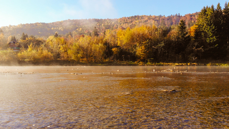 River in Carpathian mountains , Ukraine. Golden autumn, morning time