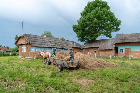 Litynia village, Ukraine - June 02, 2018: Two young boys throw hay out of a cart, stocking hay for livestock, life in a village, lifestyle Editorial