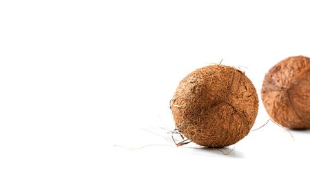 Two hairy coconuts on white background, copy space for text