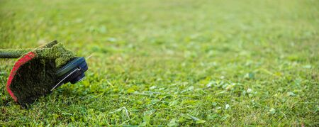 String trimmer on mown grass. Banner format background with copy space. Theme of lawn care services, tool rental or repair