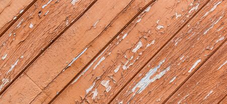 Rustic timber background with great texture, close up view. Cracked paint on wooden planks, oblique angle, aged by time. Super wide natural background with traces of wear, holes and seams, banner.